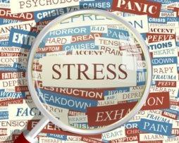 L'anxiété de la performance chez les cadres supérieurs